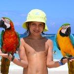 На пляже с попугаями