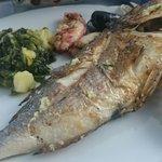 Ryba de Plata