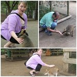 loved being able to pet the animals