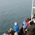 Barco, el frío era indescriptible, pero prestan monos