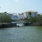 Hotel Lagoon area