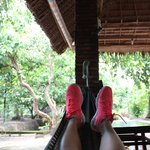 relaxing in a hammock after lunch during the mekong tour
