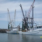The Shrimp Boats on the water