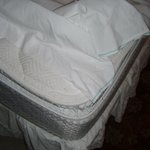 No fitted sheets gross bed #505 Leeward