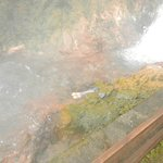 Boiling Eggs in the Hot Spring