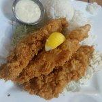 Tempura Fish ( Mahi Mahi ) Plate