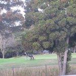 Tony Lema Course at Monarch Bay