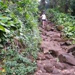 Rocky uphill path
