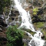 Mingo Falls 2014