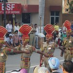 BSF in all its glory