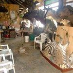 The taxidermi workshop