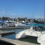 Alameda, Ca - Ballena Bay Yacht Harbor