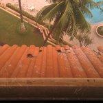 Broken Roof Tiles seen from room