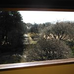 江戸東京たてもの園(三井八郎右衞門邸:2階からの光景)