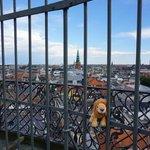 View from Round tower. Copenhagen