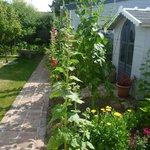 Le jardinet