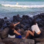 We saw so many sea turtles.