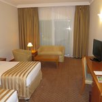 Standard room #3016
