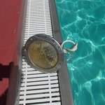 Pool light just left on side of pool with electric cable