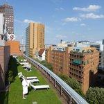 Dachterrasse mit Liegewiese