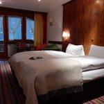 ベッドは2台ですがハリウッドツインでした。スイスは何処もそんな感じですね。