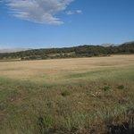 campo alrededor de Cortijo Las MInas