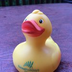 The duck that means the hot tub is ready to use!