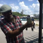 Handling Alligator at the end of the tour
