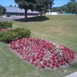Floral display along Route 23A