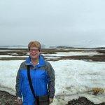 Glacier across tundra in background