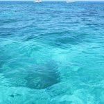 Really clear water.