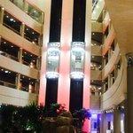 Les ascenseurs panoramiques