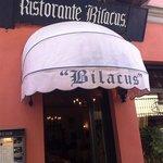 Bilacus