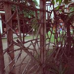 Sea garden house