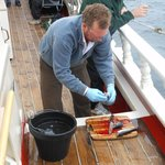 Captain Noah fileting the Fresh caught Mackerel. Right after the Captain had his chefs cook it u