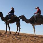 us on camels' back