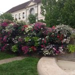 Beautiful floral display around the fountain in Baume les Dames.
