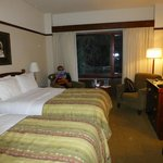 Double Room at the Alyeska