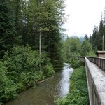 fish creek wildlife observation site