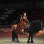 Horse and rider at Medieval Times