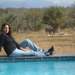 Watching zebra from the pool at the Bona Ntaba Lodge
