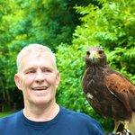 Falconry School, with Hawk Stoker