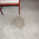 Stain on Carpet/Floor