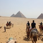 Camel ride on the Giza Plateau