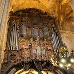 Dettaglio Organo