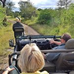 Riding in open vehicle at Sabi Sands