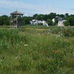 Belle Isle Marsh Reservation Foto