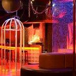 Steel Dance Cage & Dance Floor at Atlantic City's Erotic Couples Playground