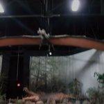 hanging Dinosaur