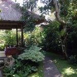 Nice garden at back of Cafe Wayan